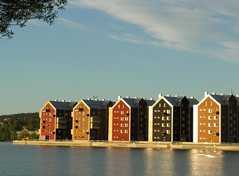 木材是可持续发展的建筑材料